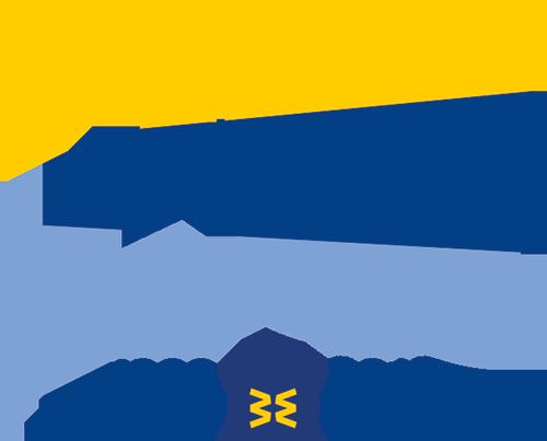 Logo 20 anni Banca Etica